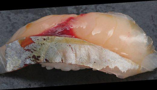 その季節にいただきたい旬の鮨ダネ 「夏の魚介を知る」