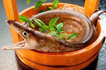 鱧?鯑?魳?読めそうで読めない魚へんの漢字