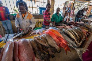 マプトの魚市場。様々な種類の魚が売られている。MUSASHIでは魚市場ではなく加工技術を持った専門業者から仕入れている
