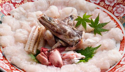 関西の夏の代名詞、鱧(ハモ)ってどんな魚なの? -SUSHI TIMES ORIGINALS-